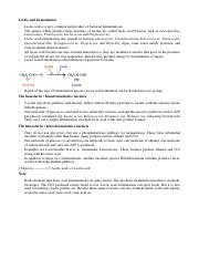 mibei final notes.pdf