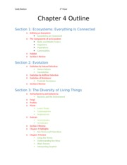 Chapter 4 Outline