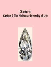 Chapter 4  Carbon & The Molecular Diversity of Life-SE