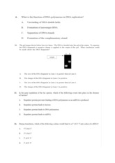 Biology Paper 1 Test on Topic 7 NEW