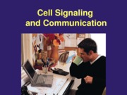 13 Cell Signaling