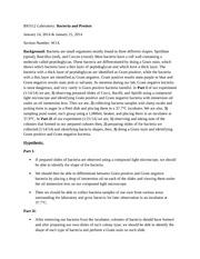 bacterial lab report