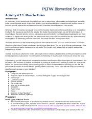 Copy of 4.2.1 Muscle Rules.docx