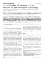 Virtual Histology of Transgenic Mouse Embryos for High-Throughput Phenotyping