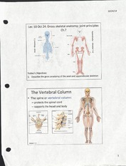 BI 231 Fall Term 2014 Lecture Notes 10