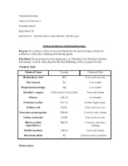 Experiment 19 (Various Reduction-Oxidation Reactions)
