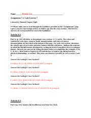 Assignment 7 lab handout_updated for 10th edition.docx