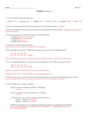 311C biomolecules_worksheet+A