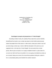 quizlet sociology 101 final essay