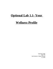 optional lab 1.1