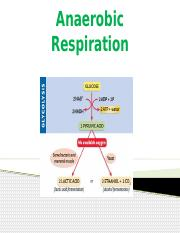 6-Anaerobic Respiration.pptx