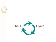 The Policy Life-Cycle