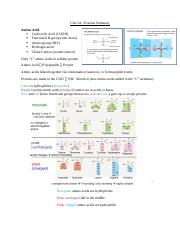 Unit 2A Proteins Summary.docx