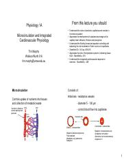 Physiol 1A  Microcirculation and Integrated_4 slide pge.pdf