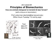 LS2lecture28Biomech