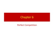 Chapter 6 - Perfect Competition