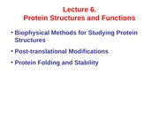 Lecture 6 Protein Function