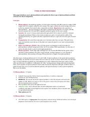 06 - TYPES OF PHOTOSYNTHESIS.doc