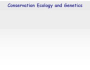 39 - conservation genetics