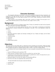 Project Plan Executive Summary