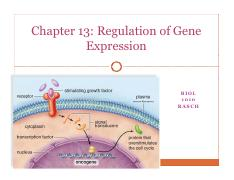 BIOL 1010 Chapter 13 Regulation of Gene Expression students.pdf
