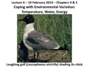 Lecture 6 Sakai Temperature_Water_Energy 2-10-14a