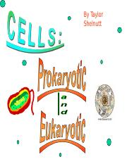 Cells Prokaryotes and Eukarotes