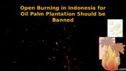 Open Burning in Indonesia for Oil Palm Plantation