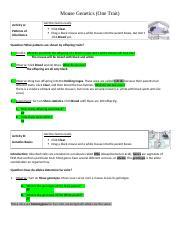 Mouse Genetics One Trait Lab.doc - Mouse Genetics(One ...