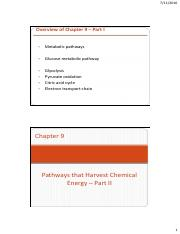 11. Chapter 9 - Pathways that Harvest Chemical Energy Part II