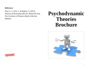 psychodynamic theories brochure Assignment: psychodynamic theories brochure create a 2- to 3-page brochure including graphics, on traditional psychodynamic theories describe personality discuss.