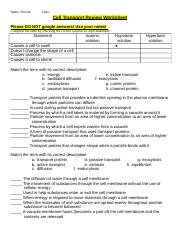 cell_transport_review_worksheet - Name Period Date Cell ...