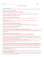 311C Gene_expression_worksheet+A