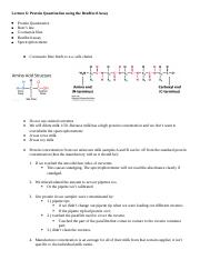 cell lab lectures labs 6-9.docx