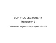 110C LEC 14 Translation 3
