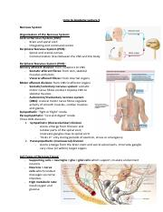 Intro to Anatomy Lecture 5 (1).pdf