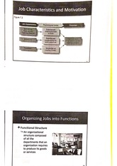 designing organizational structure notes