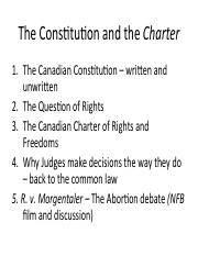 Topic 3 Constitution and Charter.pdf