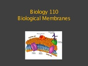 Biological Membranes Power Point Slides