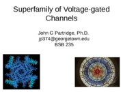 V-gated channels 2