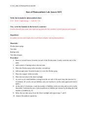 S-7-8-1_Rate of Photosynthesis Lab KEY.docx
