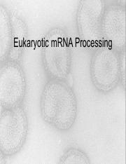 Lecture_15_RNA_processing_post.pdf