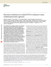 Ptf1a Enhancer Mutations and Pancreatic Disease '14