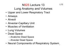 Sakai N925 FA2016 Lecture 13 Lung Anatomy and Volumes 1-Slide