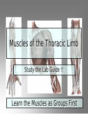 Muscles of the Thoracic Limb.pdf