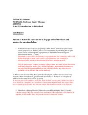 NETW202_W2_Lab_Report_Template (1).docx