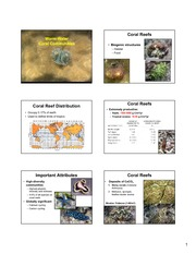 Warm-Water Coral Communities 2014 copy