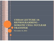 CSB349 Lecture 19_2012