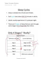 Sleep Circadian Rhythm.pdf