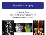 BiomedicalImaging_part1